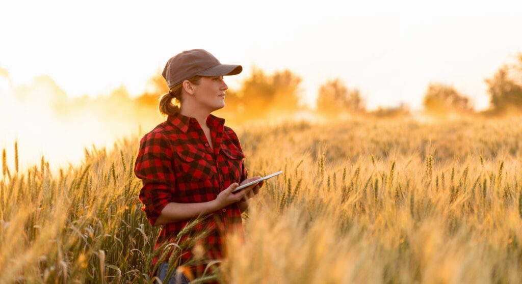 Read more on Main Factors That Influence the Farm Real Estate Appraisal Process